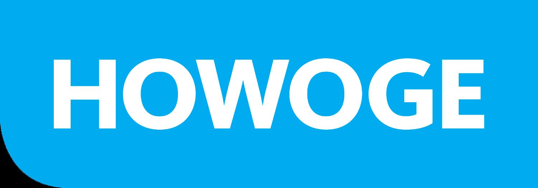 Sponsorenbild von HOWOGE Handball